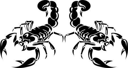 2x 30cm skorpion scorpion aukleber sticker autoaufkleber tattoo auto wandtattoo. Black Bedroom Furniture Sets. Home Design Ideas